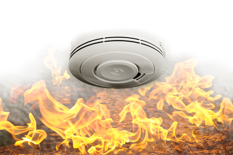 Smoke sensor and fire alarm
