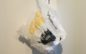 Single-Use Plastic Bag Ordinance Raises Questions Among Montclair Business Owners